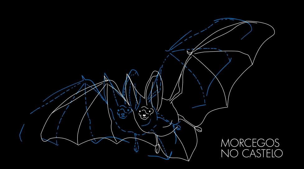 morcegos_no_castelo